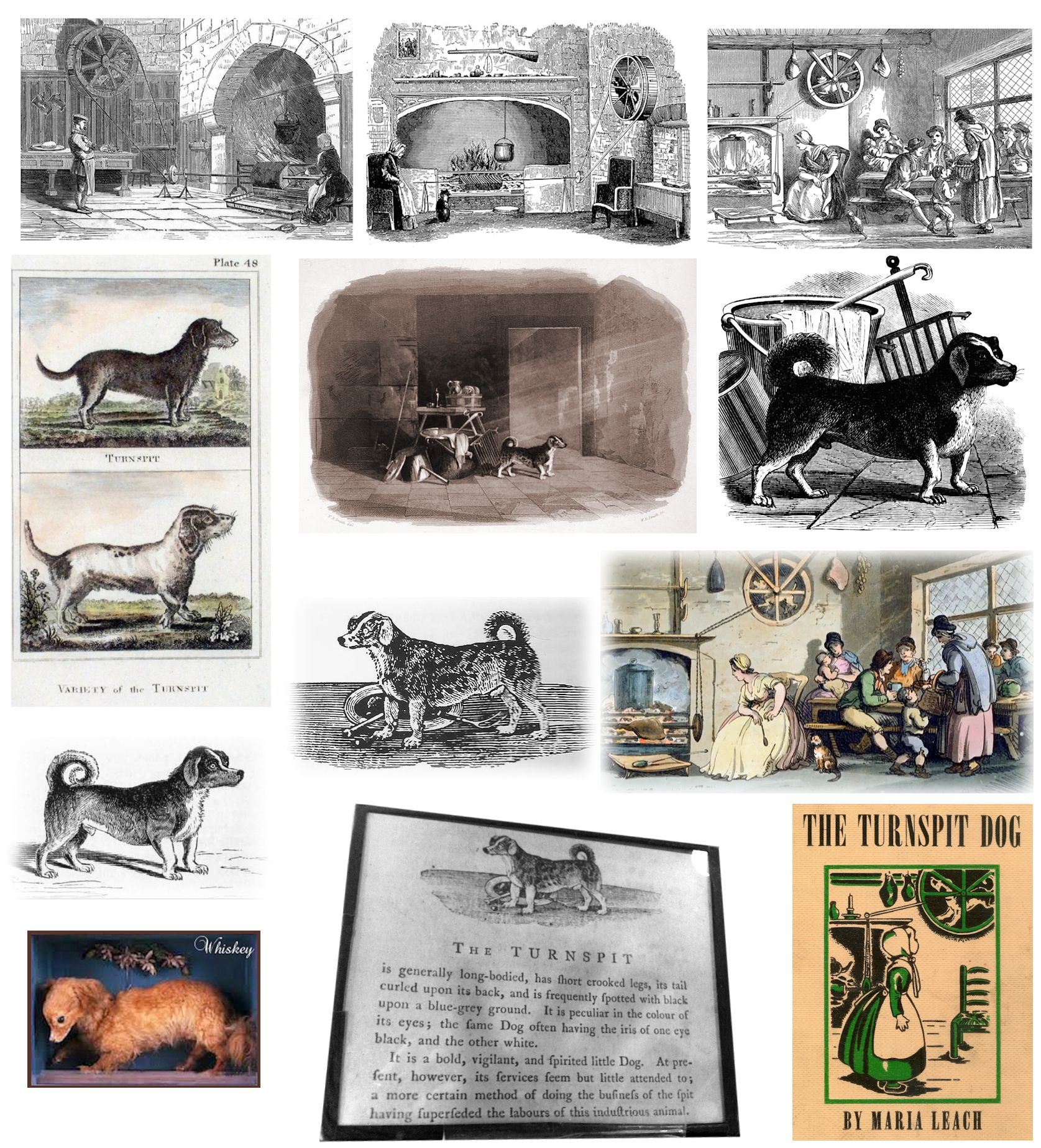 Robert Chambers Book Of Days Turnspit Dogs