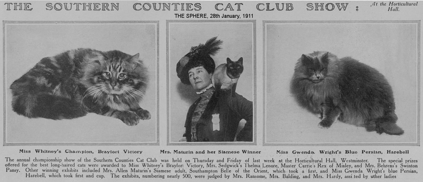 southern counties cat show WIDTH=1000 HEIGHT=431> </P>