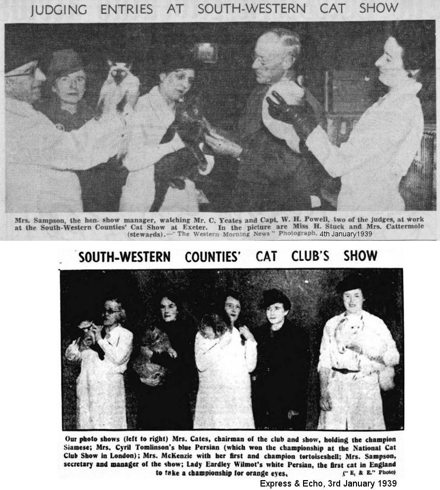 southern counties cat show