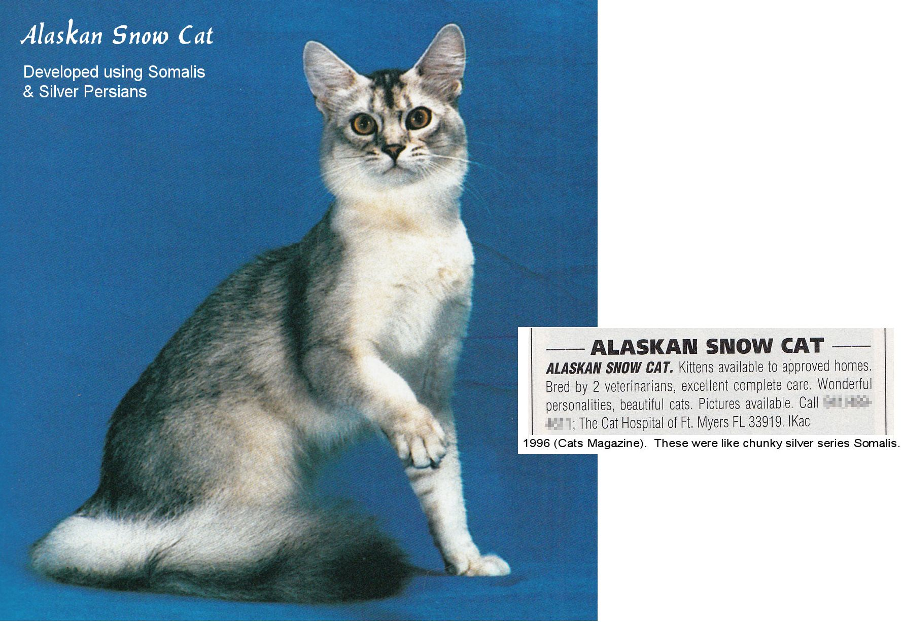 Alaskan Snow Cat from the 1990s