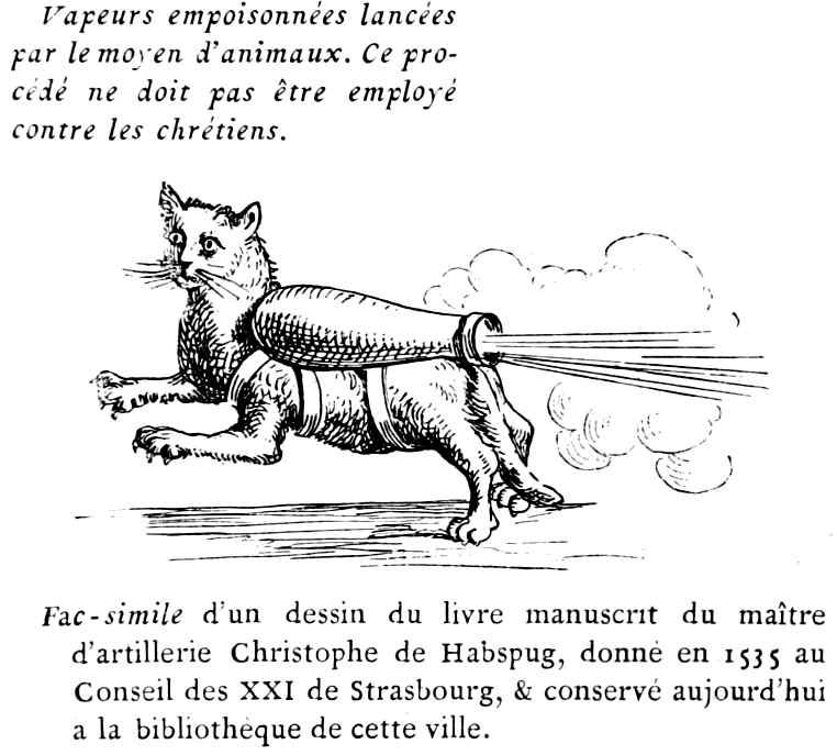 THE CAT, PAST AND PRESENT FROM THE FRENCH OF M. CHAMPFLEURY