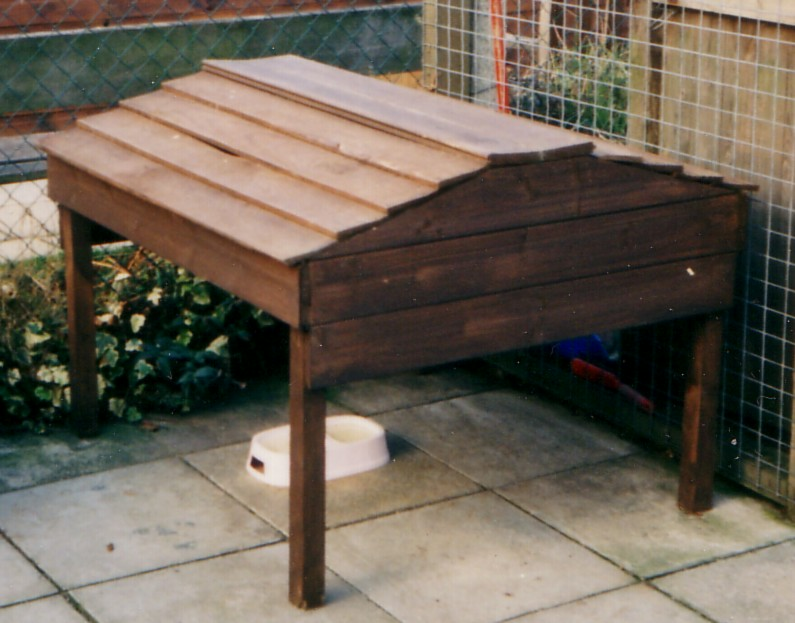 How To Make A Dog Proof Cat Feeding Station