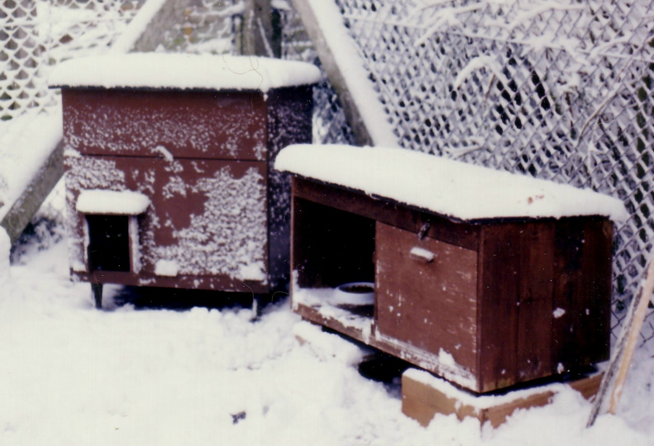 how to build winter cat shelter